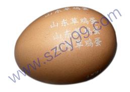 ca88会员登录 ca88亚洲城官网会员登录,欢迎光临_鸡蛋表面编码激光打标